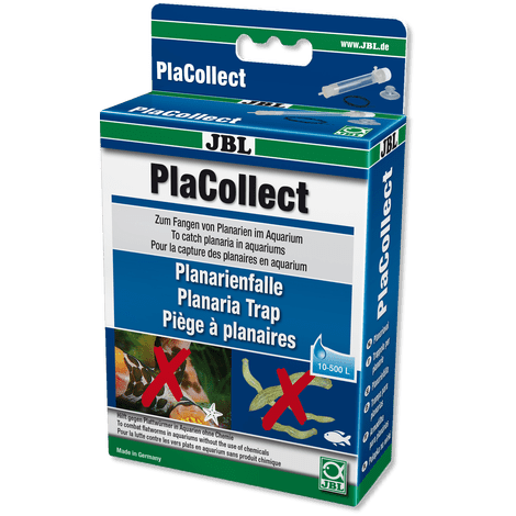 JBL PlaCollect Planaria Flatworm Trap