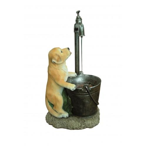 Hamac Puppy at Tap Water Feature