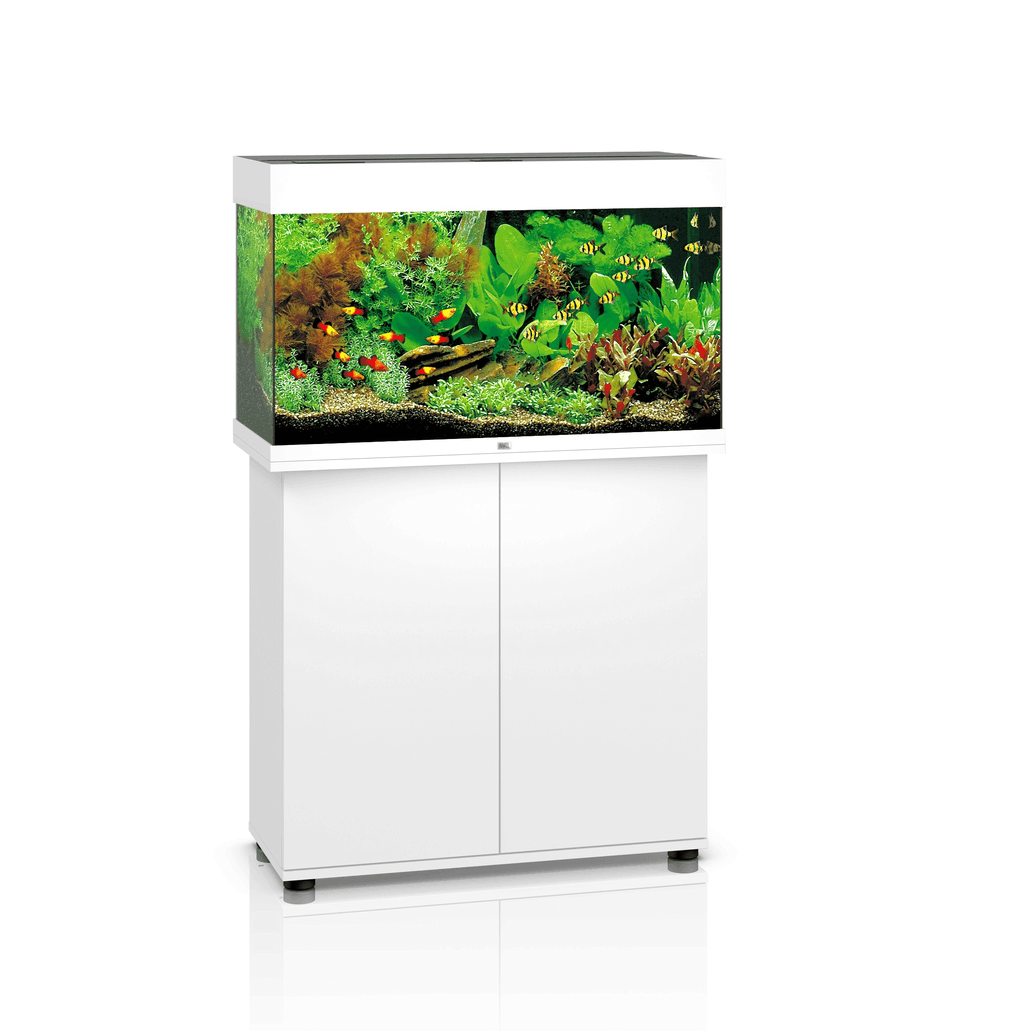Juwel Rio 125 LED Aquarium inc cabinet White-Aquariums-Lincs Aquatics Ltd