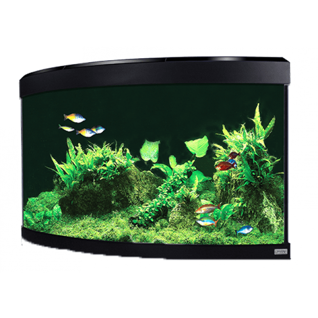 Fluval Venezia 190 LED Aquarium Black without cabinet-Fluval Freshwater Aquariums tank only-Lincs Aquatics Ltd