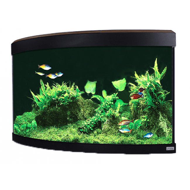 Fluval Venezia 190 LED Aquarium Walnut without cabinet-Fluval Freshwater Aquariums tank only-Lincs Aquatics Ltd