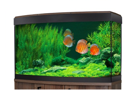 Fluval Vicenza 180 LED Aquarium Walnut