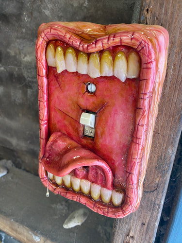 Moldy Switch Plate Tongue