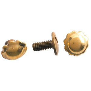 Brass Screw Back Spots