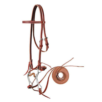 Browband Bridle with Curb Bit Set