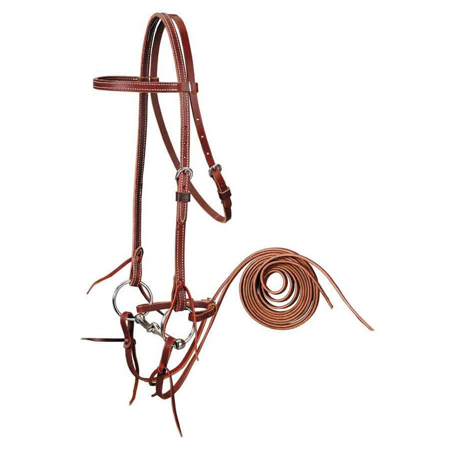 Browband Bridle with Snaffle Bit Set