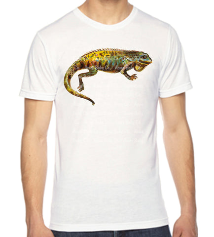 Beautiful Iguana Unisex Men's Organic Shirt