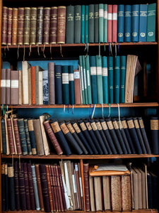 bookcase of antique notes and novels celia rogge