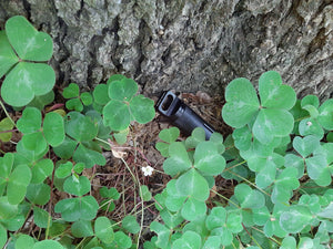 Black geocache hidden in clovers