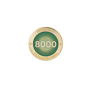Gold pin for 8000 finds in turquoise