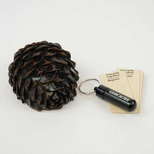 Half of a pinecone with a flat bottom where you hide a micro cache, also pictured here with log sheets