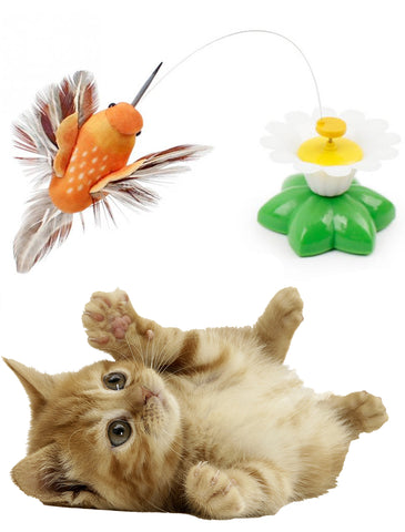 Flying Bird Cat Toy - SAVE 50% TODAY
