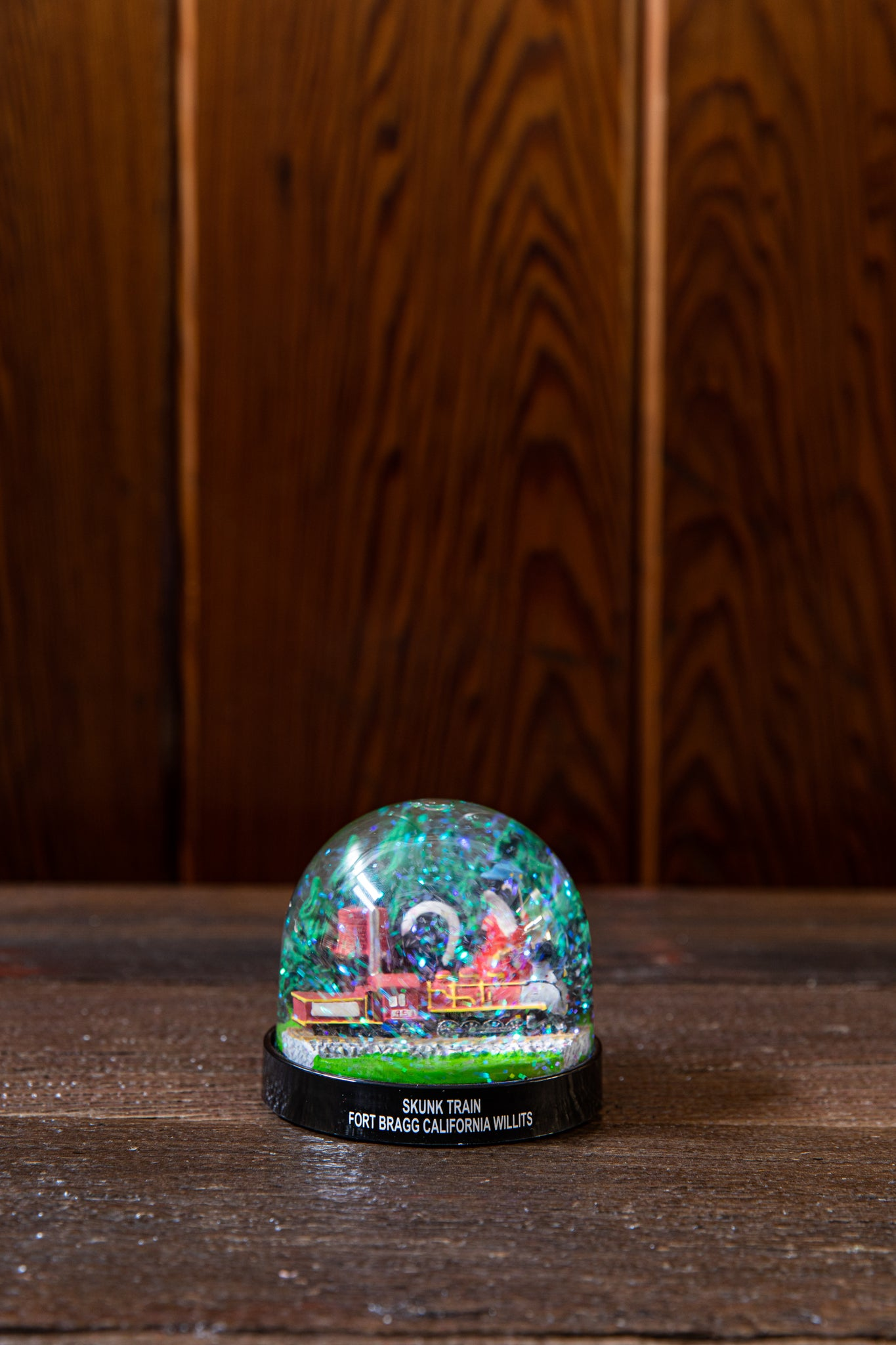 Skunk Train Snowglobe
