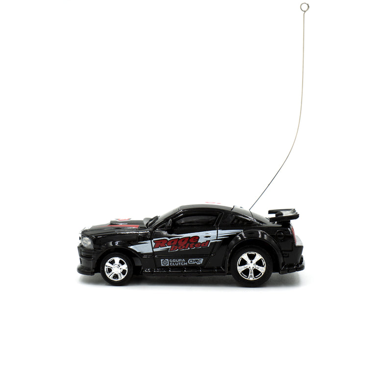 The Mini & Furious RC Car