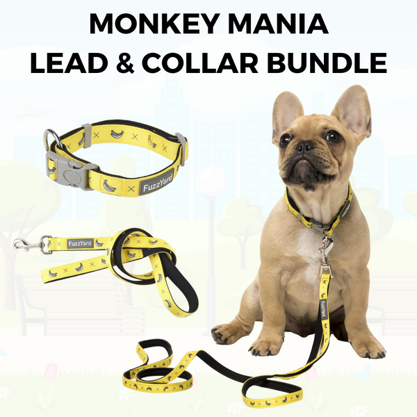 Monkey Mania Lead and Collar Bundle