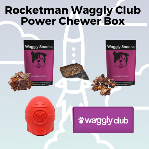 Rocketman Power Chewer Box
