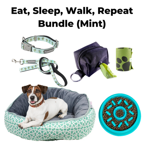 Eat, Sleep, Walk, Repeat Bundle (Mint)