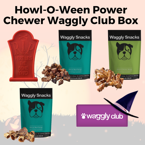 Howl-O-Ween Power Chewer Waggly Club Box