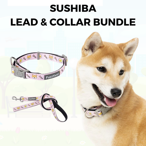 SuShiba Lead and Collar Bundle