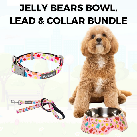 Jelly Bears Bowl, Lead and Collar Bundle
