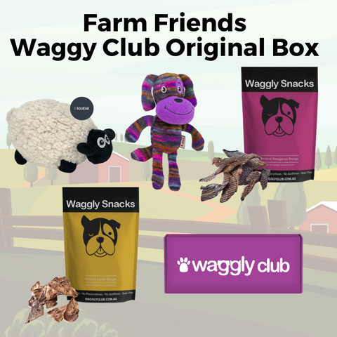 Farm Friends Waggly Club Original Box