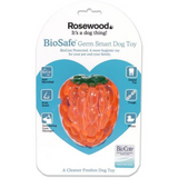 Raspberry Biosafe Toy
