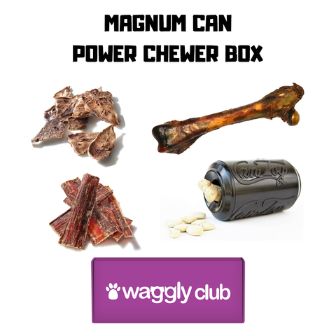 Magnum Can Power Chewer Box