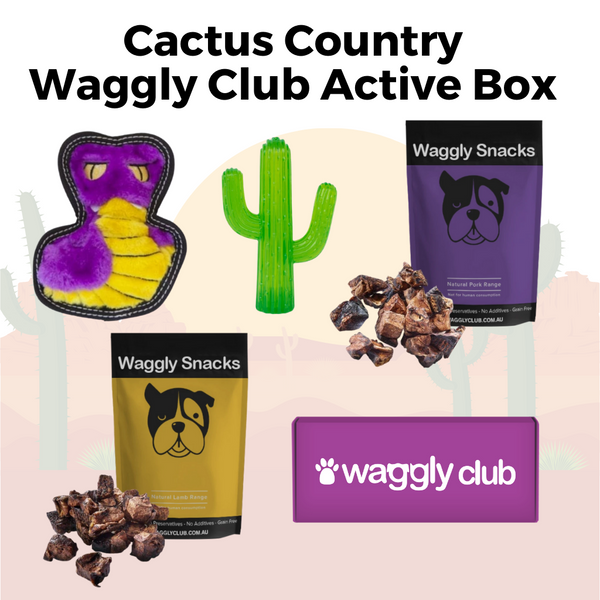 Cactus Country Waggly Club Active Box