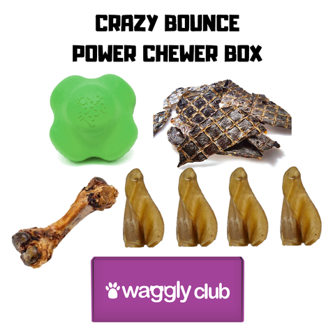 Crazy Bounce Power Chewer Box
