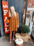 Camel Embroidered Dress