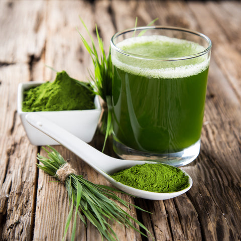 Shot de Wheatgrass Congelado (30 ml)