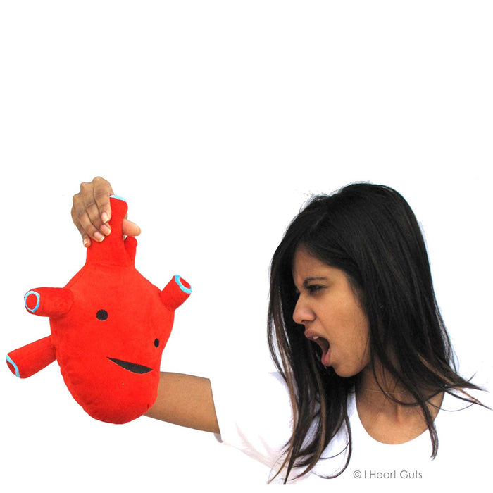 Anatomic Heart Plush