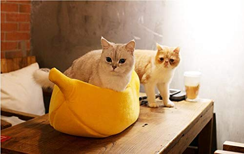Cat Banana Bed