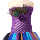 Princess Girls Peacock Feather Tutu Dress Photo Prop Halloween Costume Baby Kids Birthday Party Dress - Tutu-Dresses.com