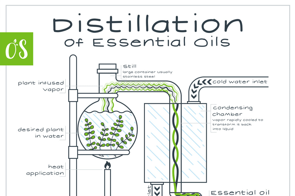 Making Essential Oils: Distillation, Cold-Press Extraction and Solvent Extraction