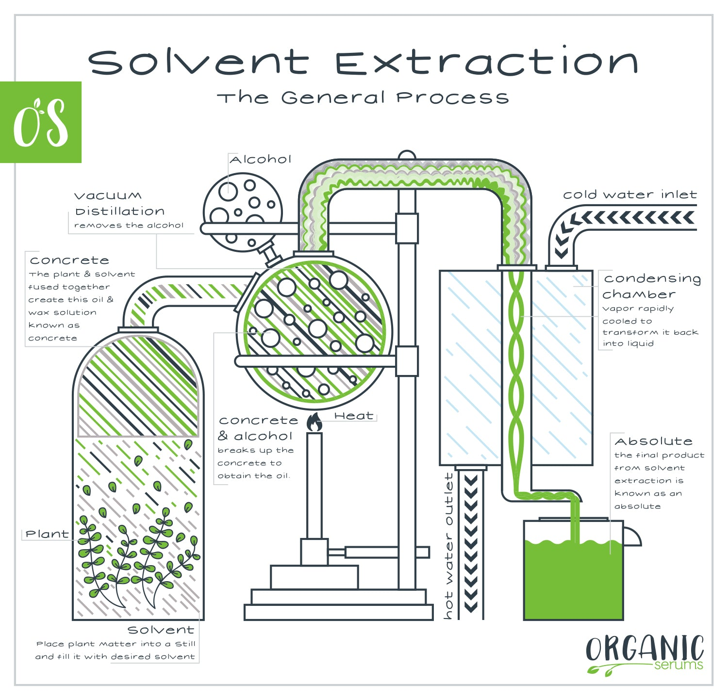Solvent Extraction of Essential Oils