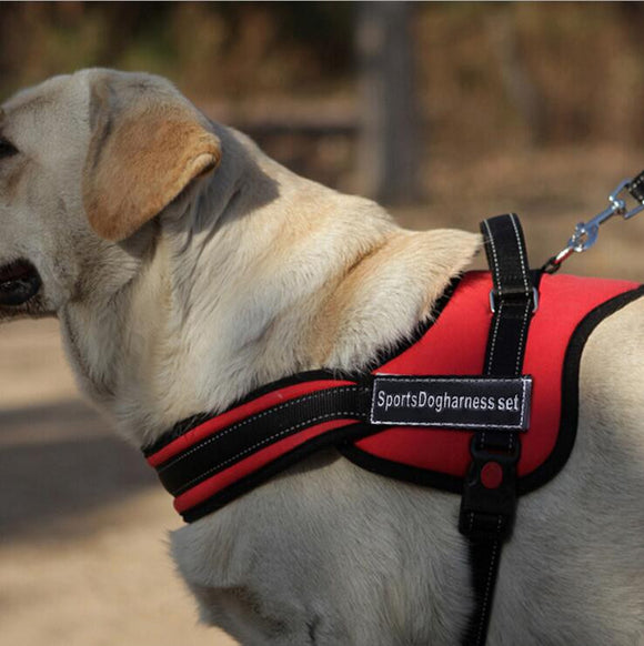 Soft Padded and Adjustable Harness for Large Dogs - SaveOnn Cart