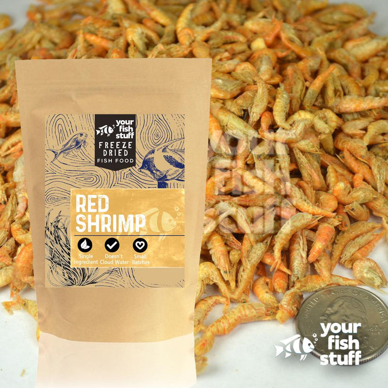 Freeze Dried Freshwater Shrimp