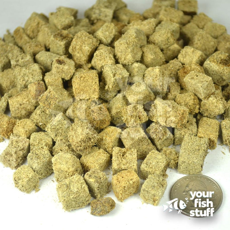 Freeze Dried Tubifex Fish Food