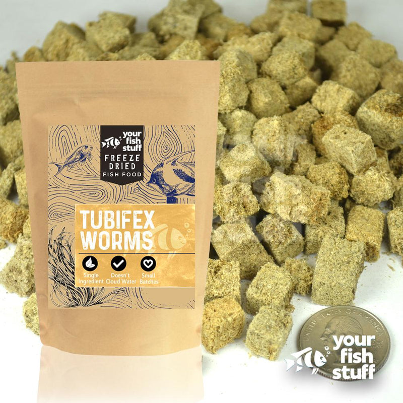 Freeze Dried Tubifex