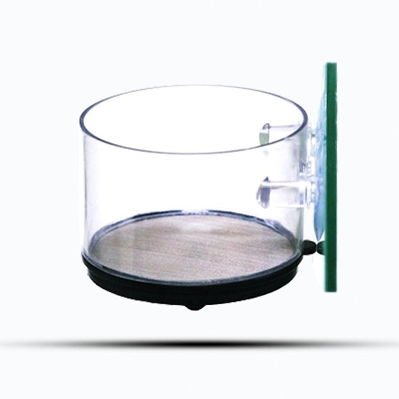 Brine Shrimp Sieve / Feeder
