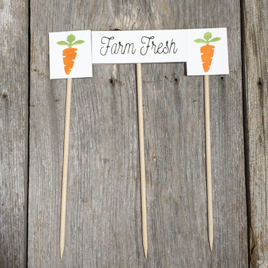 Farm Fresh Carrots Set - Spring Wooden Faux Plant Stakes