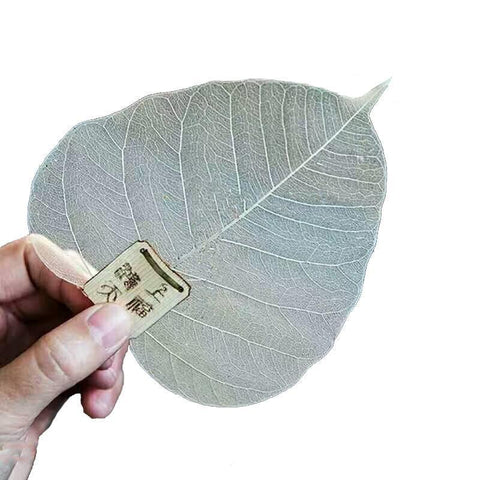 1pcs Creative Bookmarks Adornment Metope Pure Bodhi Leaf Tea Filter-Moylor