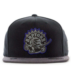 Toronto Raptors Mitchell & Ness NBA HWC Reflective Duo Snapback Hat - Black