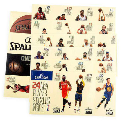 NBA Player Sticker Spalding Mini Basketball Backboard Set