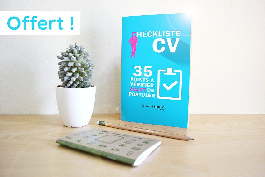 CV design Commercial ou Business developer (PowerPoint)