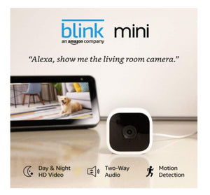 BLK100 BLINK MINI (WORKS WITH ALEXA) - digitalhome.ph
