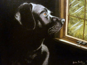 Custom Pet Portraits - 5x7 to 11x14 - oil painting of your pet - dog painting - Julie Butler Creations