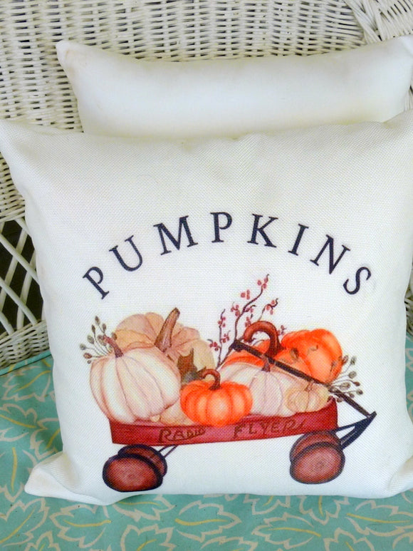 Fall Farmhouse pillow - pumpkin pillow - pillow covers - fall sofa pillow - Farmhouse decor