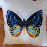 Butterfly Pillow cover - Extra Large floor pillows - Accent pillow covers - pillow covers - Julie Butler Creations